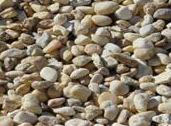 Landscape Products Carroll S Building Materials