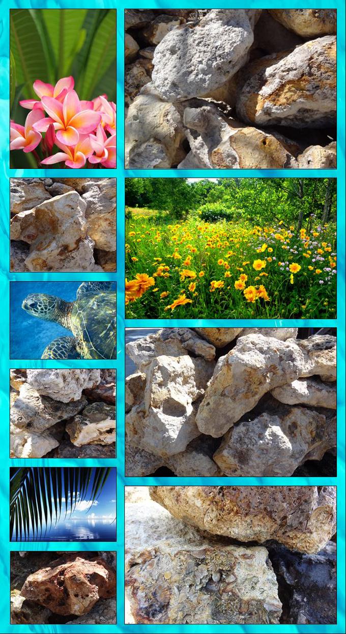 Cedar Key Field Stone