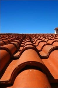 Ready Masons Blend Roof Tile Mortar