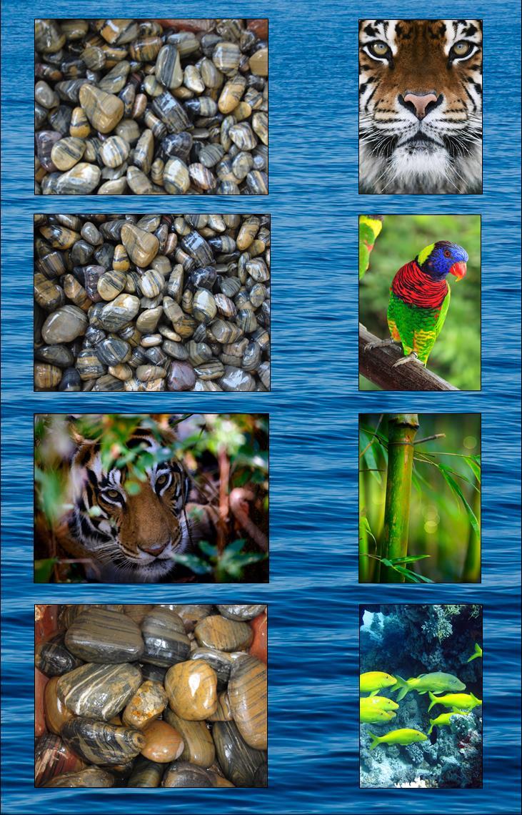 Bengal Striped Beach Pebbles