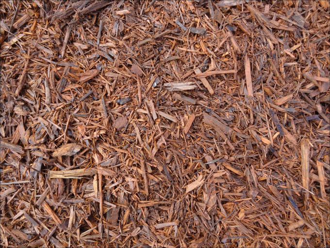 100 Pure Eucalyptus Mulch Carroll S Building Materials