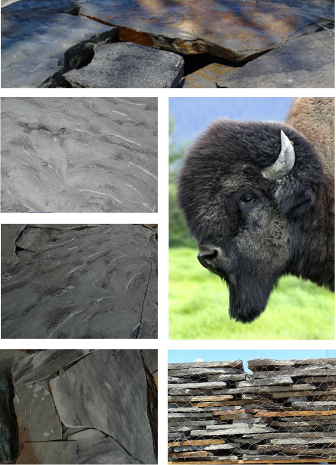 Buffalo Canyon Grey Stone