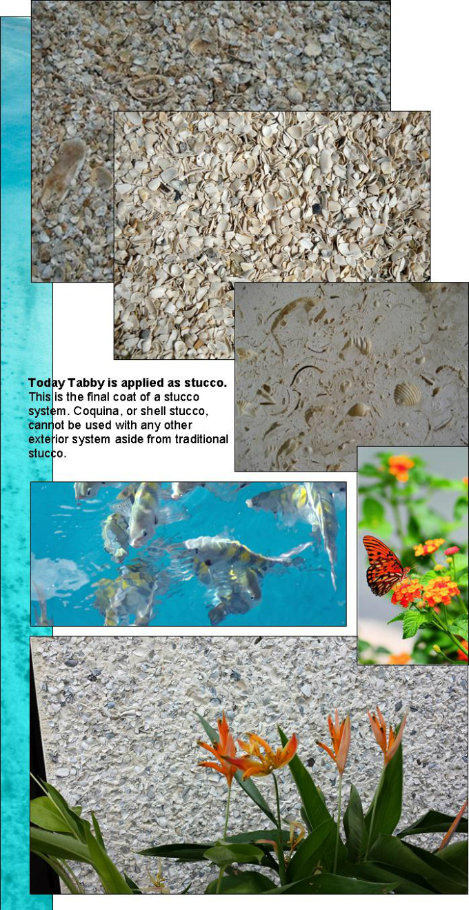 Tabby Shell Stucco