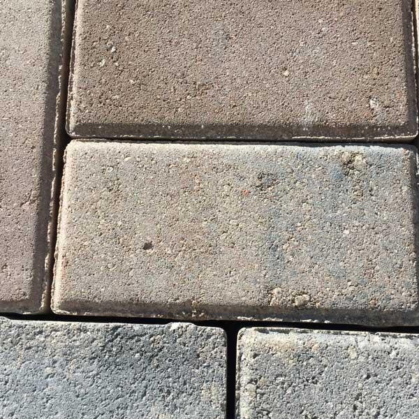 Everglade Paver Brick